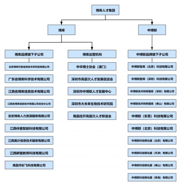 公司 BPM 项目组织结构图.png